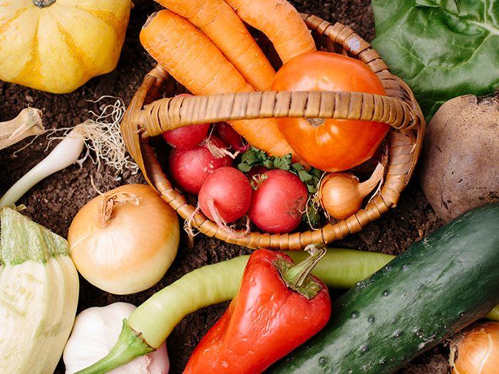無造作に並べられた多種の野菜